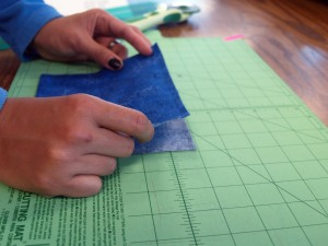 Holding Fabric